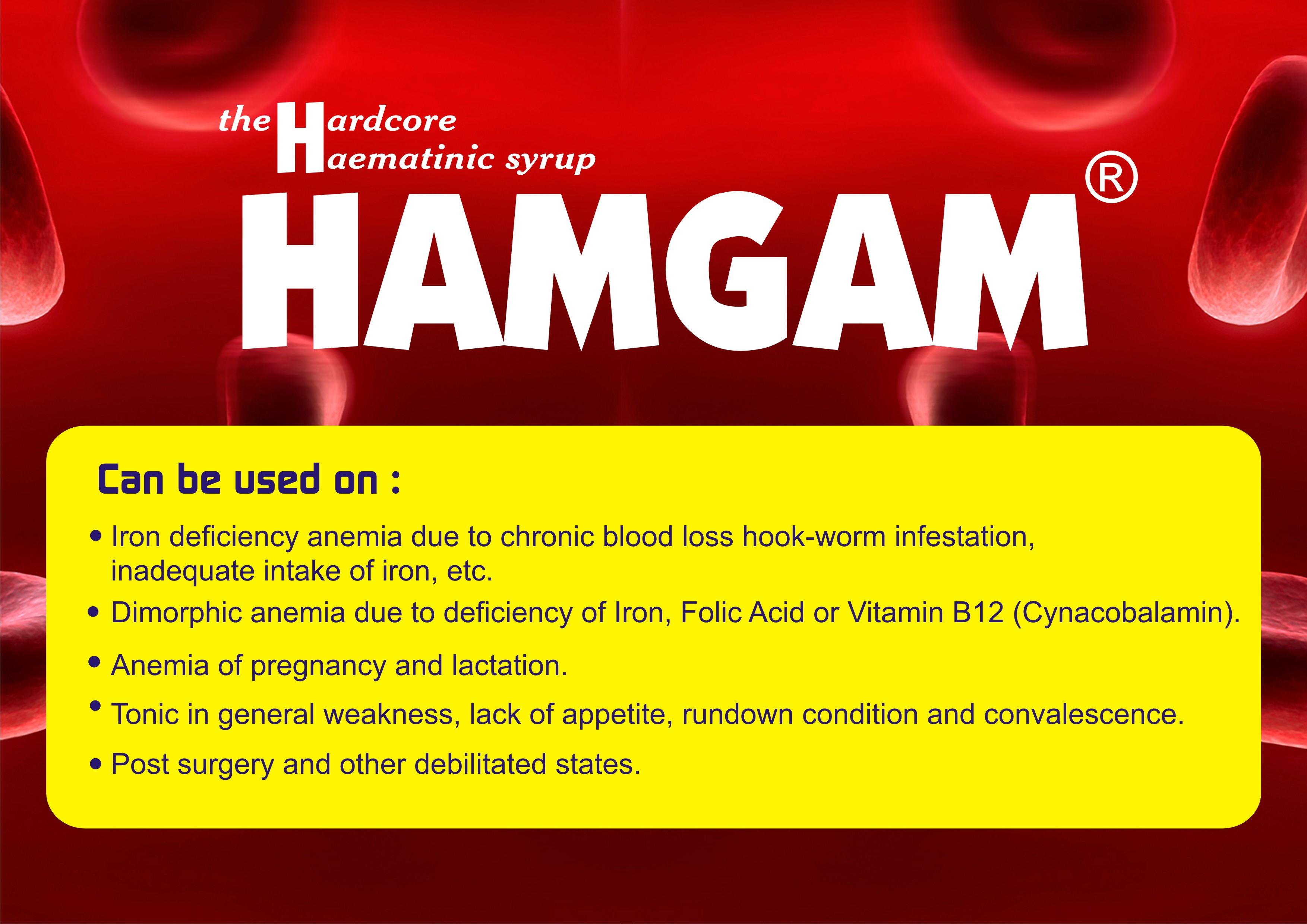Hamgam 3